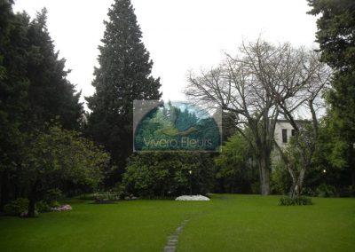 Espacios Verdes Públicos: Mantenimiento