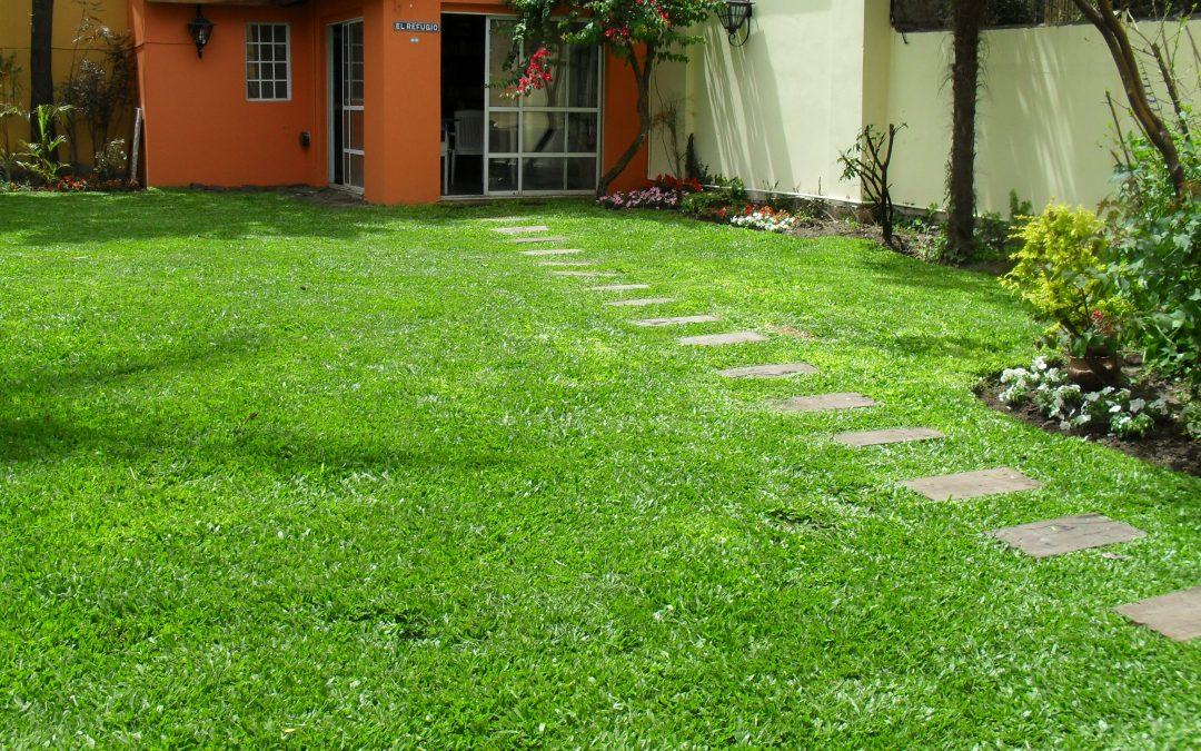 Jardineria residencial: remodelacion integral